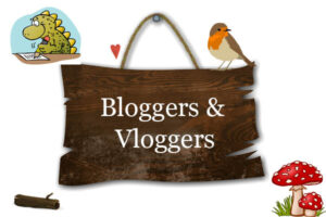 bloggers and vloggers